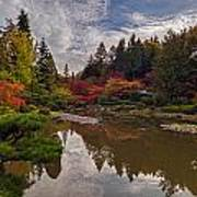 Soaring Autumn Colors In The Japanese Garden Poster