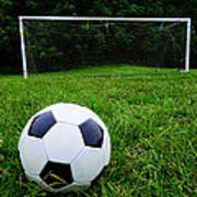 Soccer Ball On Field Poster