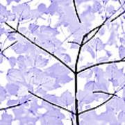 Soft Lavender Leaves Melody Poster