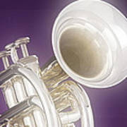 Soft Trumpet On Purple Poster
