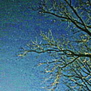 Solemn Sky Poster