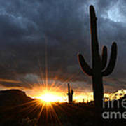 Sonoran Desert Rays Of Hope Poster by Bob Christopher