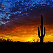 Sonoran Style Sunset  Poster