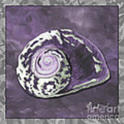Sophisticated Coastal Art Original Sea Shell Painting Purple Royal Sea Snail By Madart Poster