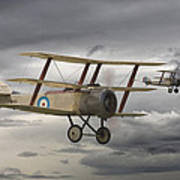 Sopwith Triplane Poster