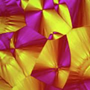 Sorbitol Crystals Poster
