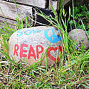 Sow Peace Reap Love Poster