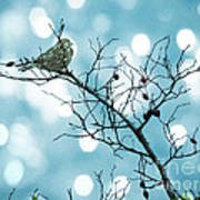 Sparrow In A Branch Poster