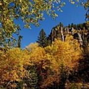 Spearfish Canyon In Autumn Color Poster