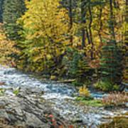 Spearfish Creek Autumn Poster