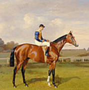 Spearmint Winner Of The 1906 Derby Poster by Emil Adam