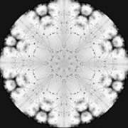 Spiderweb Dewed Snowflake Poster