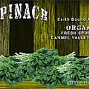 Spinach Patch Poster
