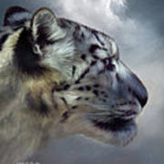 Spirit Of The Sky Poster by Carol Cavalaris