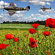 Spitfires And Poppy Field Poster