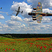 Spitfires Lancaster And Poppy Field Poster