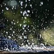 Splashing Poster