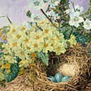 Spring, 1879 Poster