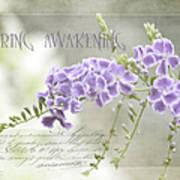 Spring Awakening Poster