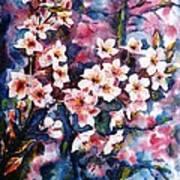 Spring Beauty Poster by Zaira Dzhaubaeva