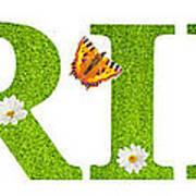 Spring Butterflies Poster