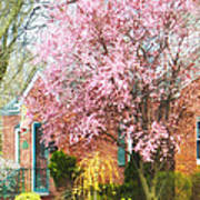 Spring - Cherry Tree By Brick House Poster