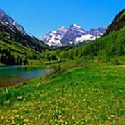 Spring Colors In Maroon Bells Poster