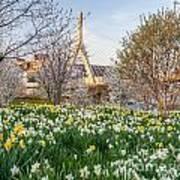Spring In Boston Poster