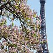 Spring In Paris Poster