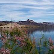 Spring Lake Mohave Poster