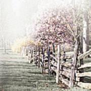 Spring Landscape With Fence Poster by Elena Elisseeva