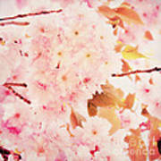 Spring Love Poster by Angela Doelling AD DESIGN Photo and PhotoArt