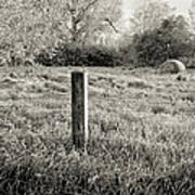 Spring Post And Bale In Black N White Poster by Tracy Salava