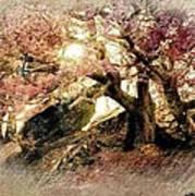 Springtime Hidaway Poster