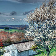 Springtime In The Blue Ridge Mountains I Poster by Dan Carmichael