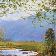 Springtime Moraine Park Poster