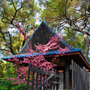 Springtime Pagoda Poster