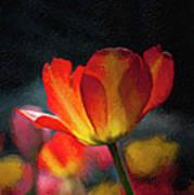 Springtime Tulips Digital Painting Poster