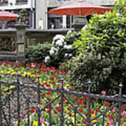 Springtime Tulips In Cologne Germany Poster