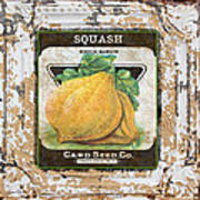 Squash On Vintage Tin Poster