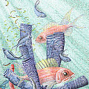 Squirrel Fish Reef Poster by Wayne Hardee
