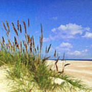 St  Augustine Beach Grass Poster