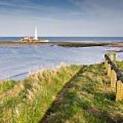 St Marys Lighthouse From Cliff Top Poster