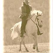 Stallion Strides Poster