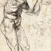 Standing Male Nude Poster