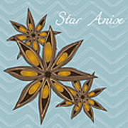 Star Anise Art Poster by Christy Beckwith