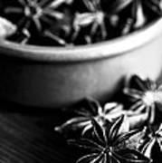 Star Anise Dish Poster