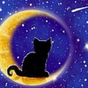 Star Gazing Cat Poster