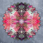 Star Mandala B Poster