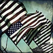 Stars N  Stripes Poster
